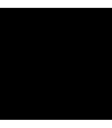 Recaro Salia Elite i-Size Prime Pale Rosa (0-18 kg / bis 105 cm / i-Size R129)