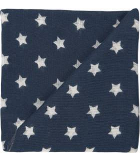 Zewi Bébé-Jou Baby Gaze Motiv Bedruckt 60x60 (Nuscheli) Anthrazit Sterne